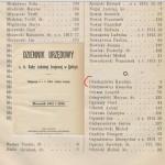 Dziennik urzedowy z 1915 roku Karolina OBERHARD