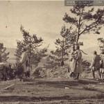 Po bitwie .... grudzień 1914