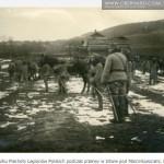 Marcinkowice 6 grudnia 1914